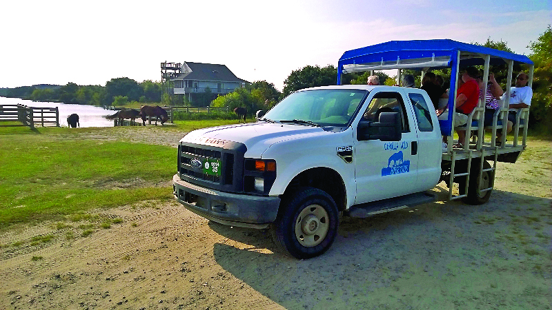 Bobs Wild Horse Tour Truck