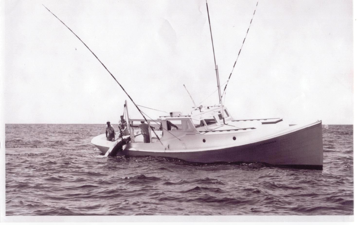 Historic photo of Albatross Ship