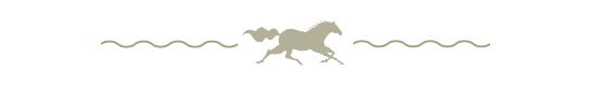 Corolla Horse Icon