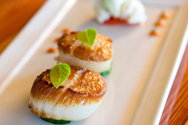 The Paper Canoe Restaurant - Duck - Scallops