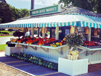 Green Acres Farm Market Stand