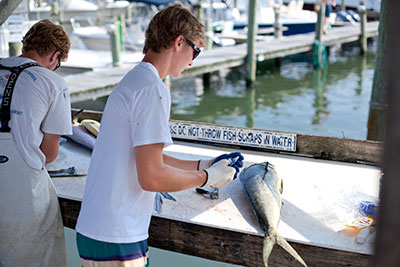 Outer Banks Commonly Caught Fish