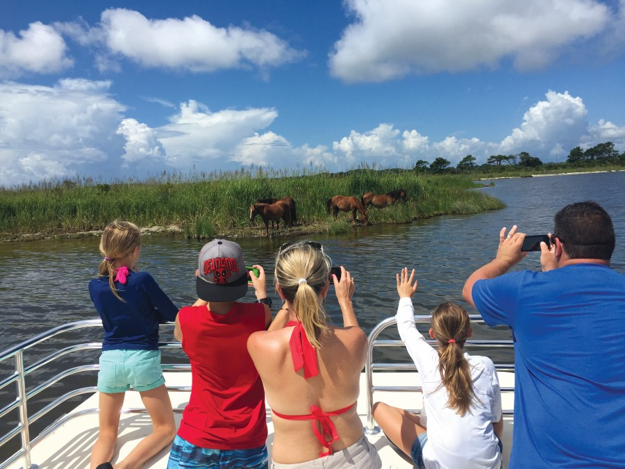 Family watches from a boat in awe as wild stallions graze through marsh