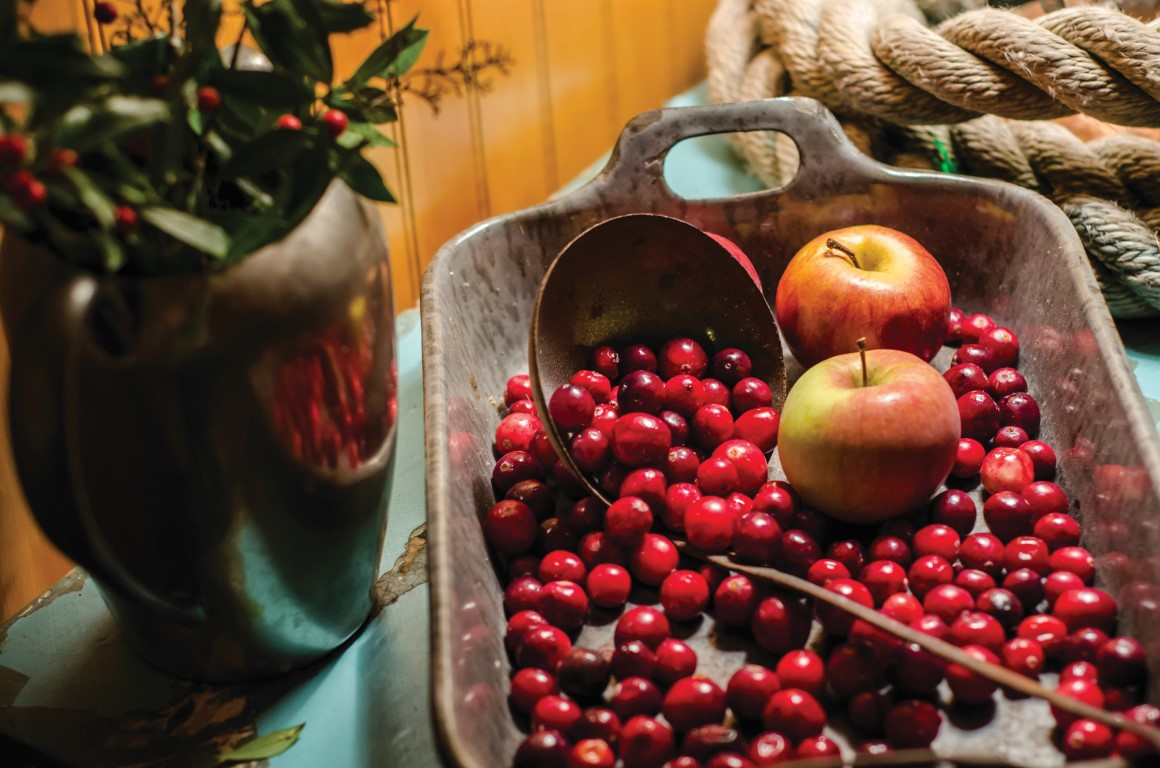 Fresh cranberries and apples