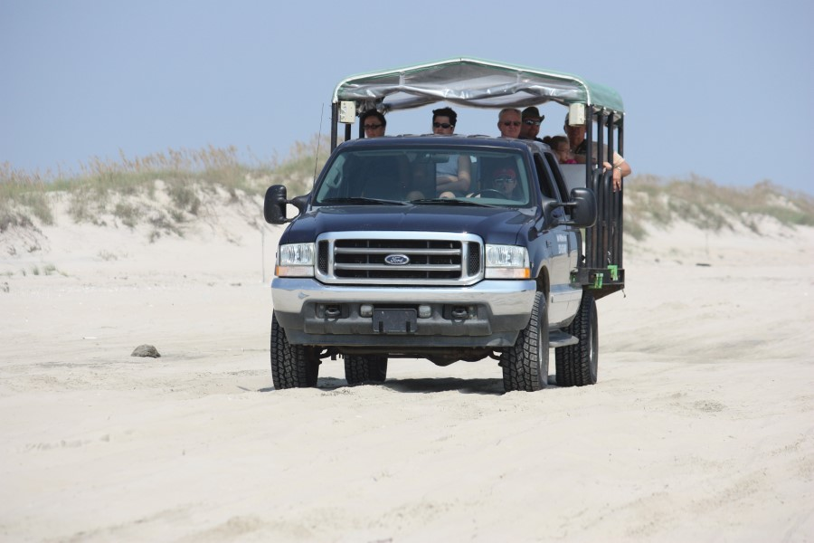 Back Beach Wild Horse Tours truck