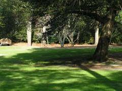 Yoga in the Gardens at Elizabethan Gardens, Manteo NC