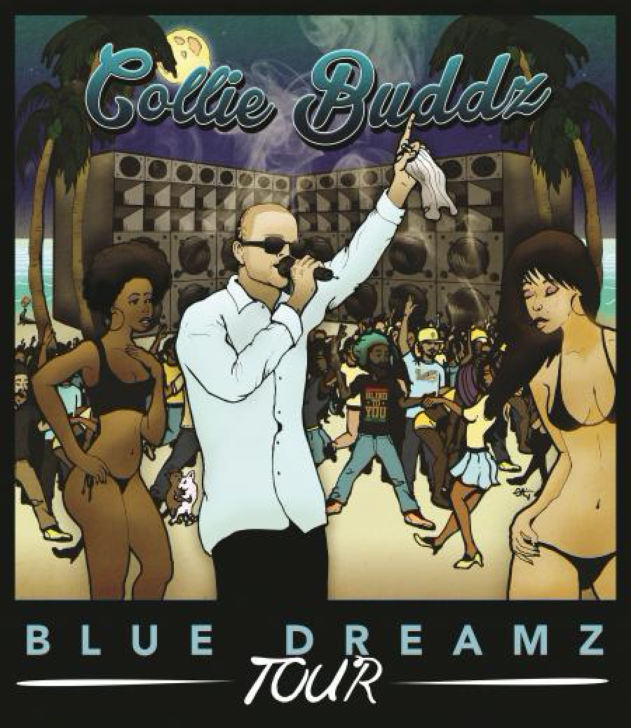 Collie Buddz Tour Poster