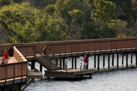 Nature Walk on the Duck Boardwalk