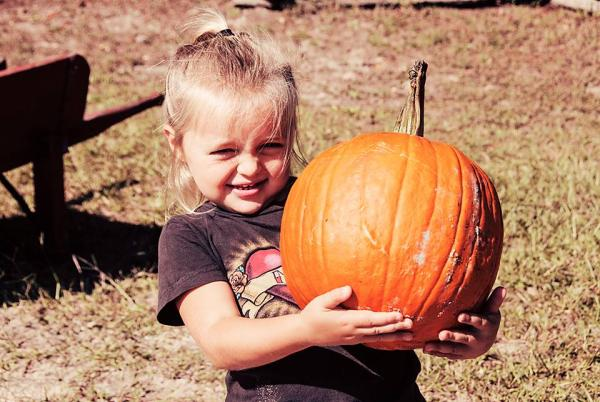 Pumpkin Patch -- Saturdays in October