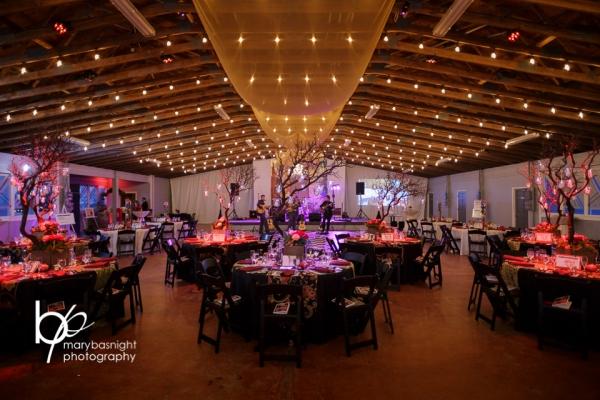 Emerald Elegance Gala