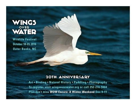Wings Over Water Wildlife Festival Encore