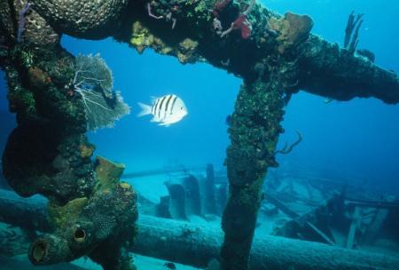 Underwater Heritage Symposium
