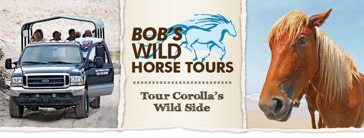 Bob's Corolla Wild Horse Tours