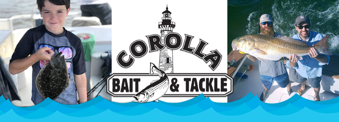 Corolla Bait and Tackle