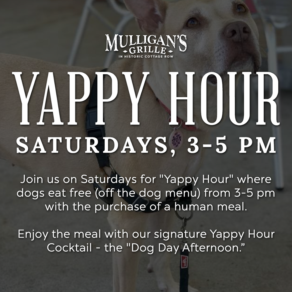 b75e602bed3 Plus, every Saturday from 3 p.m. - 5 p.m. is Yappy Hour! Bring your pup and  your best friend can eat free off the doggy menu when you purchase a human  meal.