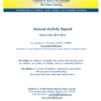 Children and Youth Partnership, Annual Activity Report