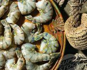 Jumbo Shrimp - Burrus Market