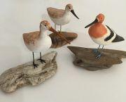 Handcarved Shorebird - SeaDragon Gallery