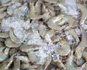 Shrimp - Seaside Farm Market Corolla