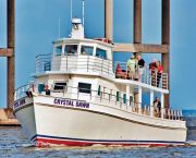 Purple Martin Excursion - Crystal Dawn Head Boat Fishing and Sunset Cruise