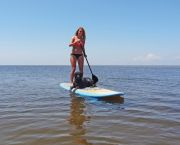 Stand up Paddleboards/(Sup) - Hatteras Watersports