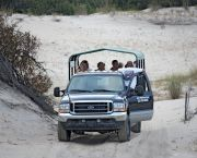 Family Adventure — Evening Horse Tours  - Corolla Wild Horse Tours