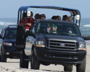 Fun And Adventure For The Whole Family! - Bob's Corolla Wild Horse Tours