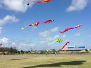 Kitty Hawk Kites, Outer Banks Kite Festival