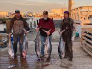 Fishin' Fannatic, Tuna Bites is Still On