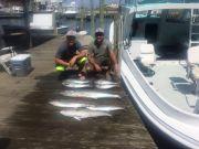 Albatross Fleet, successful 1/2 day
