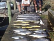 Albatross Fleet, Mixed Catch