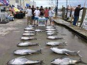 OBX Marina, 6-16-2020