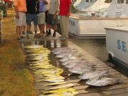 Oregon Inlet Fishing Center, You Can't Beat Fishing Out of Oregon Inlet Fishing Center