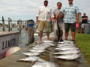 Oregon Inlet Fishing Center, Tuna Time, Baby!!