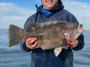 Oceans East Bait & Tackle Nags Head, Better weather with bluefin, tautog, and sea bass being caught!