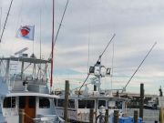Oceans East Bait & Tackle Nags Head, Boat hoping to chase Bluefin tomorrow