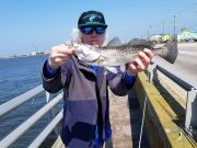 Oceans East Bait & Tackle Nags Head, Little bridge had an awesome trout bite today!