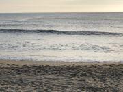 Outer Banks Boarding Company, OBBC Saturday June 6th