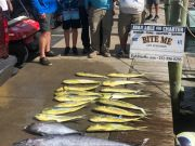 Bite Me Sportfishing Charters, Blue Marlin, Wahoo, Tuna, and dolphin