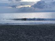 Outer Banks Boarding Company, Thursday September 16th