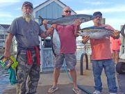 Tuna Duck Sportfishing, Tuna and Mackerel