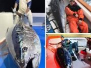 Oceans East Bait & Tackle Nags Head, It doesn't get much better than this in February! BIG BLUEFIN!!!!