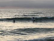Outer Banks Boarding Company, OBBC Wednesday September 2nd