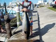 Fishin' Fannatic, Yellowfin Tuna  - 115 lb