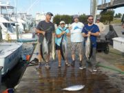 Pirate's Cove Marina, Tuna, Sailfish, and Wahoo...