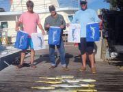 Pirate's Cove Marina, Fish for the Fleet.!.!.