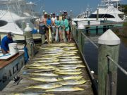 Pirate's Cove Marina, Good Things Come to Those Who Bait...