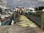 Pirate's Cove Marina, You want the Gills, We got the Skills...