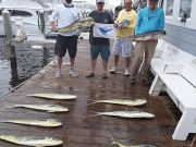 Pirate's Cove Marina, The Fish don't care..