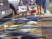 Tuna Duck Sportfishing, Another Good Fishing Day